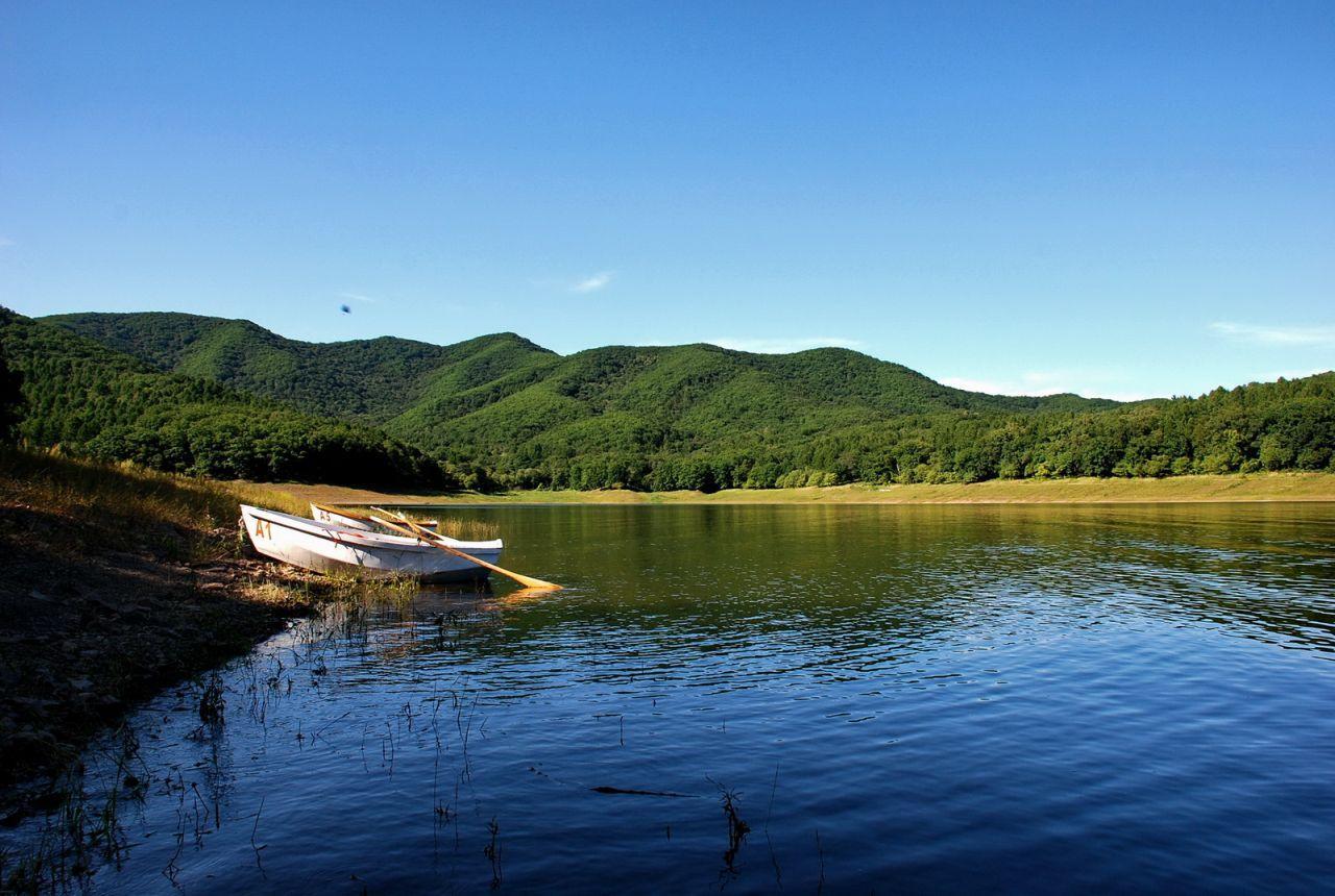 """松花湖的什么淡水鱼好吃?本地人推荐""""三花一岛"""",刺少肉嫩味鲜"""