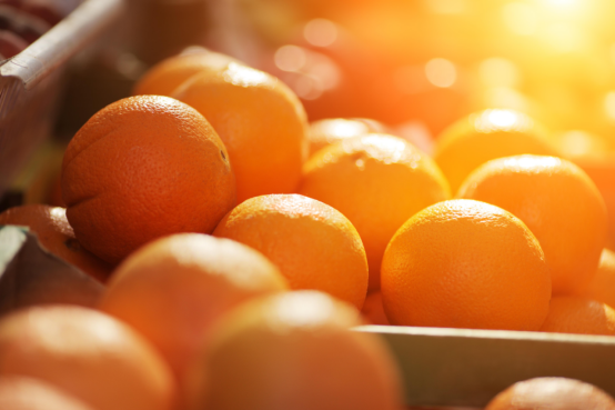 开胃佳品橙子-今日新鲜事