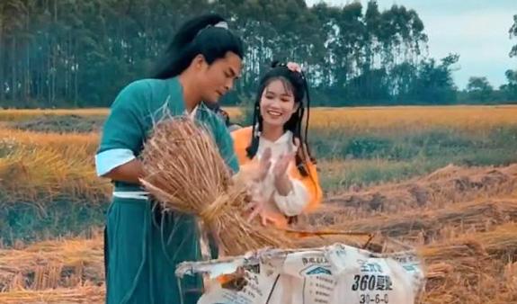 """农村夫妻扮""""郭靖和黄蓉""""收稻子"""