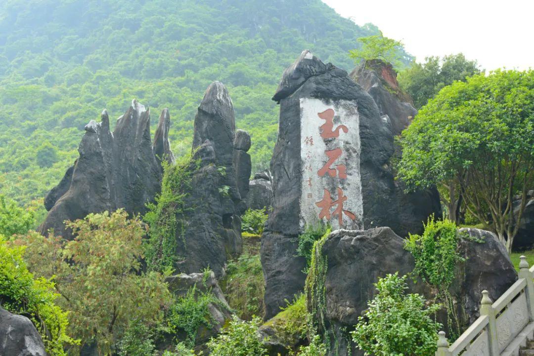 鲜为人知,广西有片一亿年前的罕见汉白玉石林!
