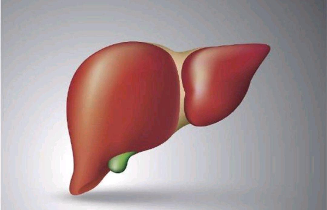 肝好的人多有4个表现,养肝经验:做好2件事,肝脏自通透-今日新鲜事